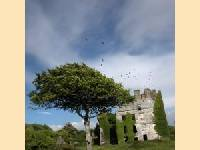 Menlo castle bei Galway in Irland - Neues Marriott-Courtyard wird 2006 er�ffnet